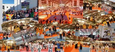 Campeonato Mundial de Artes Marciais All Styles 2017 - Grandes resultados